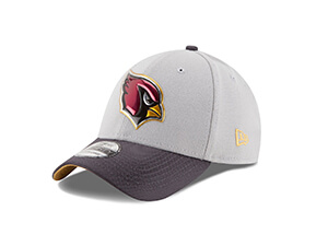 NFL Gold Collection Gray 39THIRTY Stretch Fit Cap