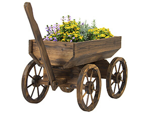 Backyard Grow Best Choice Flowers Planter