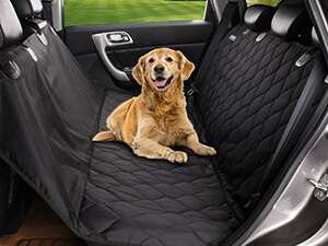 Pet Magasin Seat Cover