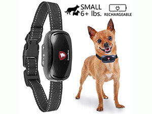 Small Rechargeable Dog Bark Collar For Tiny To Medium Dogs